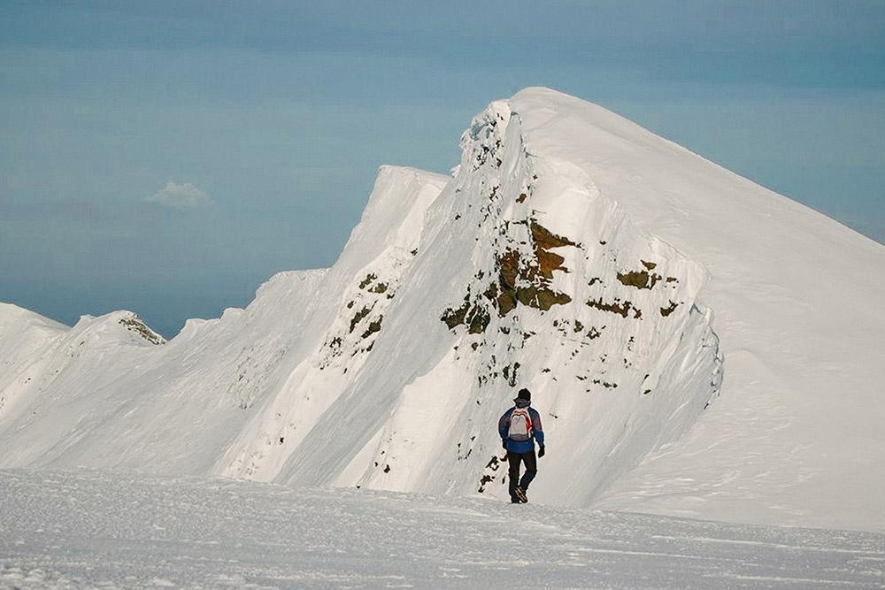 Monte Tarn, Punta Arenas