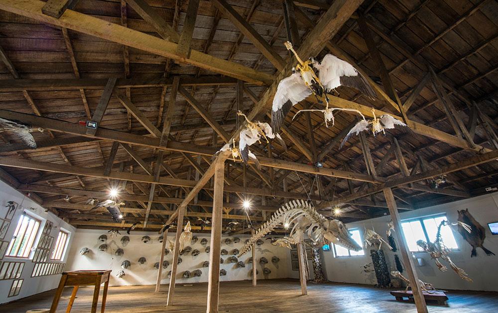 Museo Río Seco, Punta Arenas